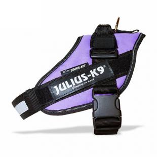 JULIUS K9  harnais Mauve (+ de14kg)