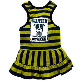 Robe Be Wanted jaune pour chiens
