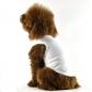 T-shirt Blanc débardeur pour chiens